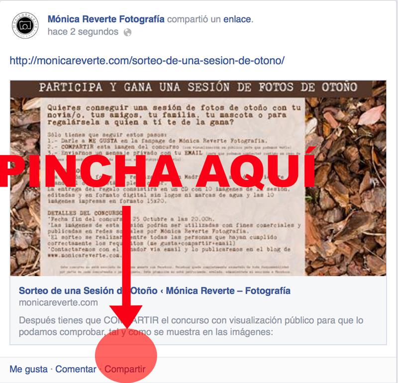 SEGUNDO-PASO-CONCURSO-a